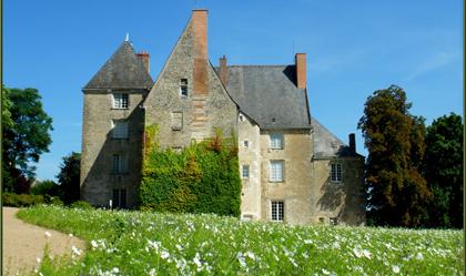 http://www.le-clos-de-ligre.com/images/chateau-de-sache-41.jpg