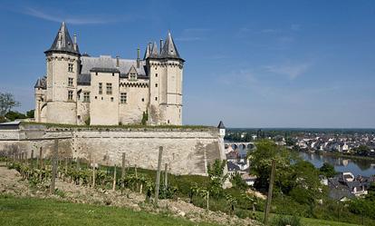 http://www.le-clos-de-ligre.com/images/chateau-de-saumur.jpg